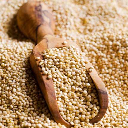 Actif : Quinoa - Shampooing Nourrissant+