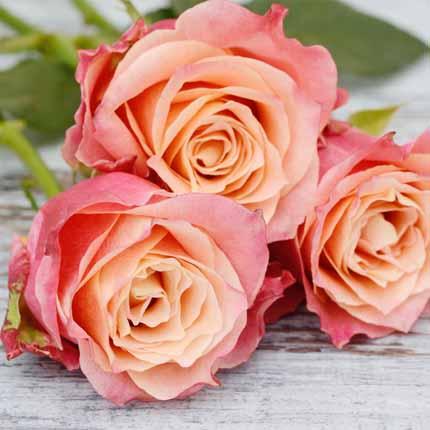 Actif : Rose fleurie - Eau de Parfum N