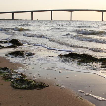 Actif : Eau de mer de Noirmoutier - Solution Éclat Complexe-AHA