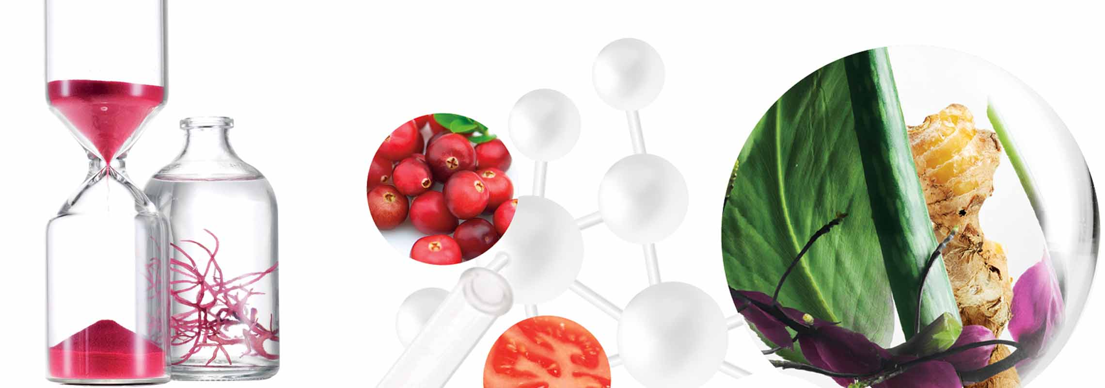 Ligne de produit - Nutrimetics France : Platinum - Soins haute performance